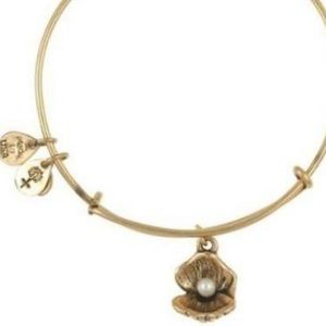 Gold Oyster Alex and ani bracelet